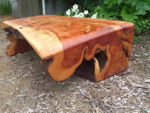 One Piece Macrocarpa  Coffee Table SOLD